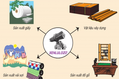 Màng xốp Cellulose có thể ngăn chặn hiện tượng đoản mạch trong pin