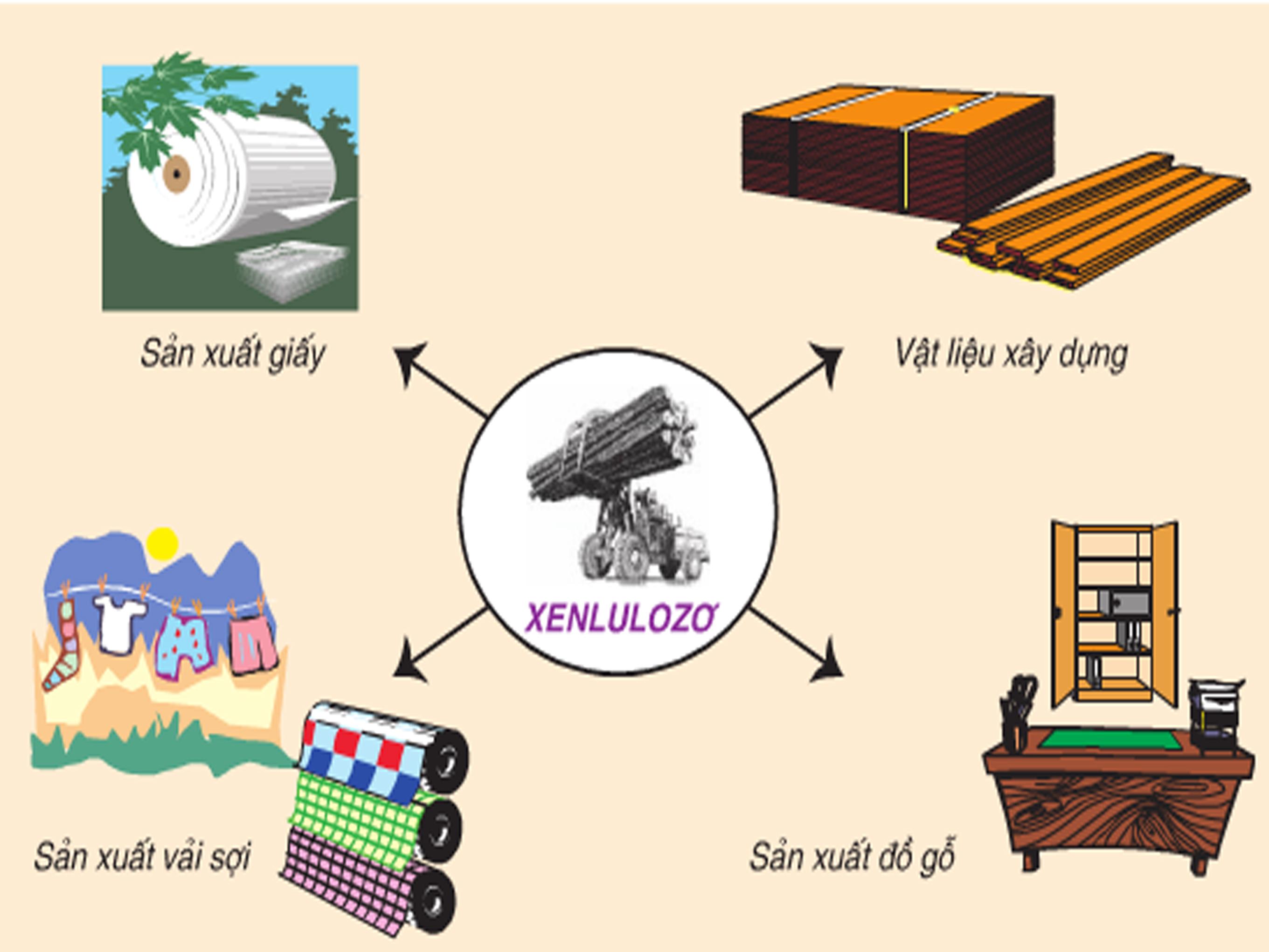 Xenlulozo có thể ngăn chặn hiện tượng đoản mạch trong pin