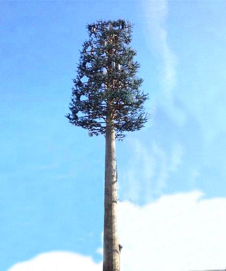 Cột Anten giả cây pine